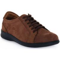 Boty Ženy Šněrovací společenská obuv Grunland 68ENNO Marrone