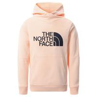 Textil Dívčí Mikiny The North Face DREW PEAK HOODIE 2.0 Růžová
