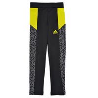 Textil Dívčí Legíny adidas Performance G LEO TIG Černá