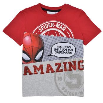 Textil Chlapecké Trička s krátkým rukávem Desigual 21SBTK08-3005