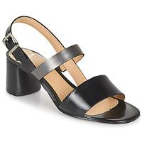 Boty Ženy Sandály Perlato 11805-JAMAICA-NOIR Černá