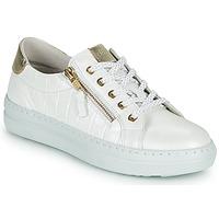 Boty Ženy Nízké tenisky Dorking VIP Bílá / Stříbrná