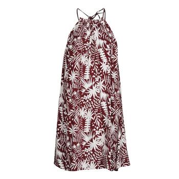 Textil Ženy Krátké šaty Freeman T.Porter ROCCA MOROCCO Bordó