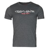 Textil Muži Trička s krátkým rukávem Teddy Smith TICLASS Šedá