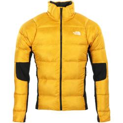 Textil Muži Bundy The North Face Crimptastic Hybrid Jacket Žlutá