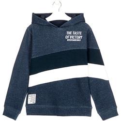 Textil Děti Mikiny Losan 023-6002AL Modrý