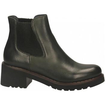 Boty Ženy Kotníkové boty Calpierre BUFALIS ROMM radice