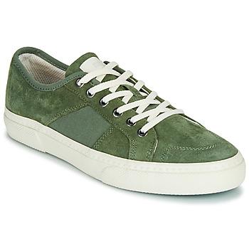 Boty Muži Nízké tenisky Globe SURPLUS Zelená