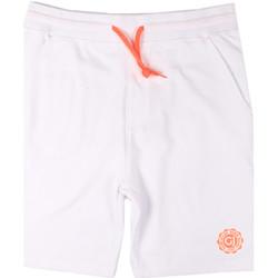 Textil Muži Plavky / Kraťasy Gaudi 811BU24004 Bílý