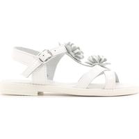 Boty Děti Sandály Lulu LT080056L Bílý