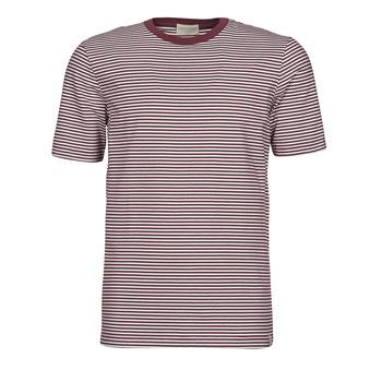 Textil Muži Trička s krátkým rukávem Scotch & Soda 160847 Červená / Bílá