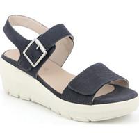 Boty Ženy Sandály Grunland SA1881 Modrý