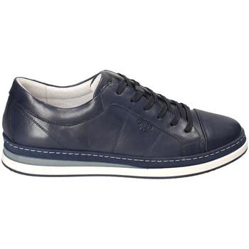 Boty Muži Nízké tenisky IgI&CO 3138100 Modrý