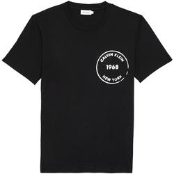 Textil Muži Trička s krátkým rukávem Calvin Klein Jeans K10K104509 Černá