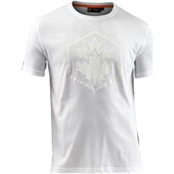 Textil Muži Trička s krátkým rukávem Lumberjack CM60343 005 514 Bílý