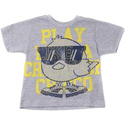 Textil Děti Trička s krátkým rukávem Chicco 09006918000000 Šedá