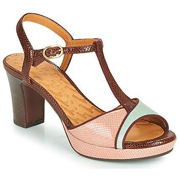 Boty Ženy Sandály Chie Mihara NATI Hnědá / Růžová / Zelená