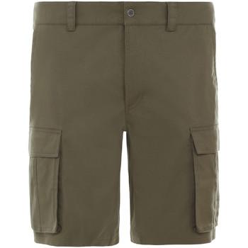 Textil Muži Kraťasy / Bermudy The North Face NF0A4CAL7D61 Zelený