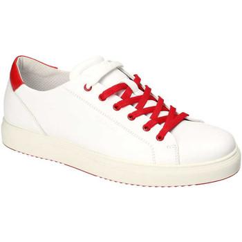Boty Muži Nízké tenisky IgI&CO 3132700 Bílý