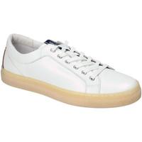 Boty Muži Nízké tenisky IgI&CO 3134500 Bílý