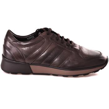 Boty Muži Nízké tenisky Soldini 20630 2 Hnědý