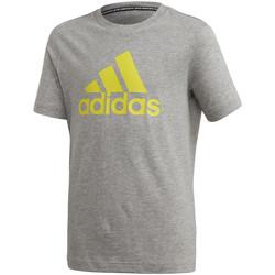 Textil Děti Trička s krátkým rukávem adidas Originals FQ7721 Šedá