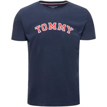 Textil Muži Trička s krátkým rukávem Tommy Hilfiger UM0UM01623 Modrý