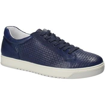 Boty Muži Nízké tenisky IgI&CO 1125 Modrý