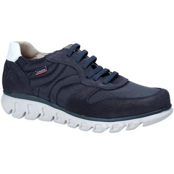 Boty Muži Nízké tenisky CallagHan 12903 Modrý