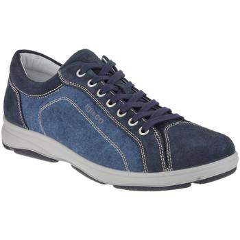 Boty Muži Nízké tenisky IgI&CO 1113 Modrý