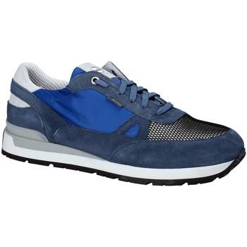 Boty Muži Nízké tenisky Exton 993 Modrý