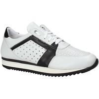 Boty Muži Nízké tenisky Exton 558 Bílý