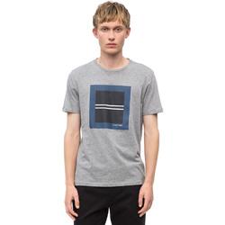 Textil Muži Trička s krátkým rukávem Calvin Klein Jeans K10K102679 Šedá