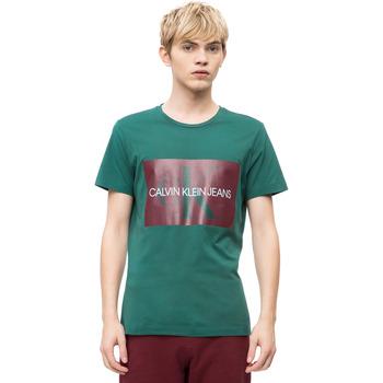 Textil Muži Trička s krátkým rukávem Calvin Klein Jeans J30J307843 Zelený