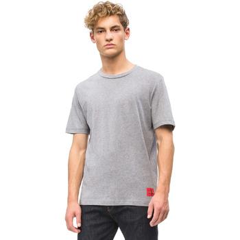 Textil Muži Trička s krátkým rukávem Calvin Klein Jeans J30J309616 Šedá