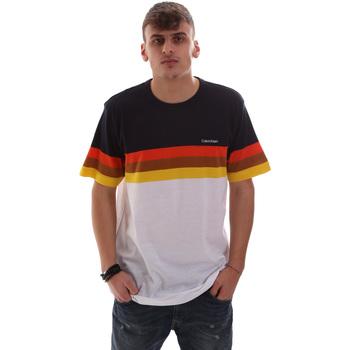 Textil Muži Trička s krátkým rukávem Calvin Klein Jeans K10K104375 Bílý