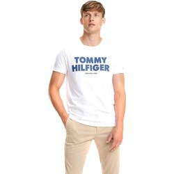 Textil Muži Trička s krátkým rukávem Tommy Hilfiger MW0MW09821 Bílý
