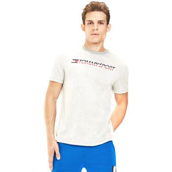 Textil Muži Trička s krátkým rukávem Tommy Hilfiger S20S200051 Šedá