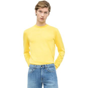 Textil Muži Svetry Calvin Klein Jeans K10K103690 Žlutá