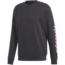 Textil Muži Mikiny adidas Originals DV2037 Černá