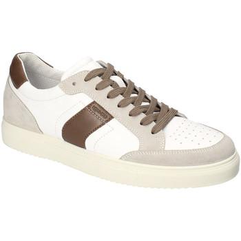 Boty Muži Nízké tenisky IgI&CO 3132922 Bílý