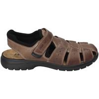 Boty Muži Sandály Enval 3247522 Hnědý
