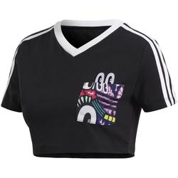 Textil Ženy Halenky / Blůzy adidas Originals DV2658 Černá