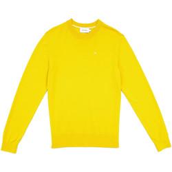 Textil Muži Svetry Calvin Klein Jeans K10K104068 Žlutá