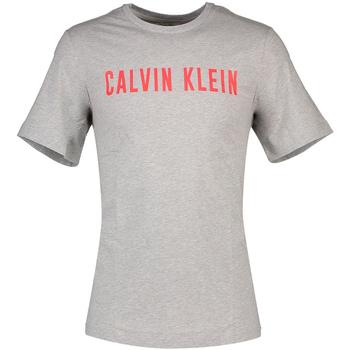 Textil Muži Trička s krátkým rukávem Calvin Klein Jeans 00GMF8K160 Šedá