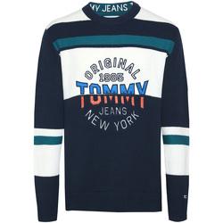 Textil Muži Svetry Tommy Hilfiger DM0DM06992 Modrý