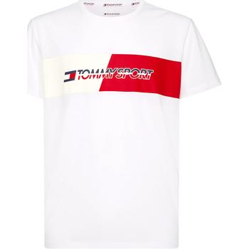 Textil Muži Trička s krátkým rukávem Tommy Hilfiger S20S200197 Bílý