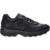 Boty Muži Nízké tenisky IgI&CO 4114300 Černá