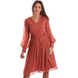 Textil Ženy Krátké šaty Fracomina FR19FMREMI Růžový