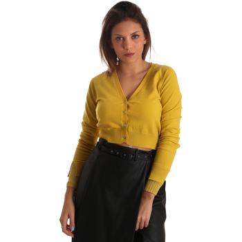 Textil Ženy Svetry / Svetry se zapínáním Fracomina FR19FM823 Žlutá